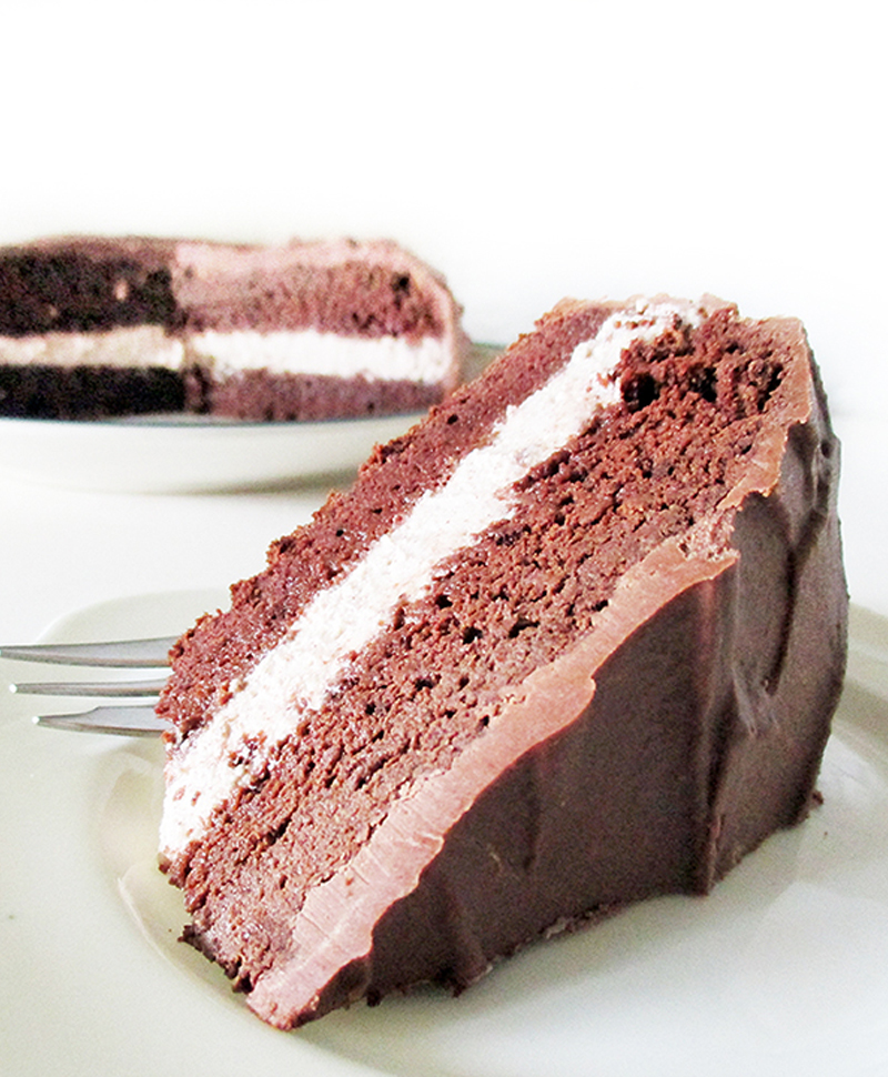Vegan Gluten free Fruit Sweetened Hazelnut Chocolate Cake Recipe 2