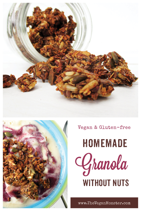 Vegan Gluten free Refined Sugar Free Nut Free Home Made Musli Recipe P