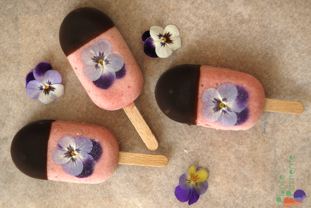 Pretty in Pink Wild Pansy Popsicles by Plante Pusherne