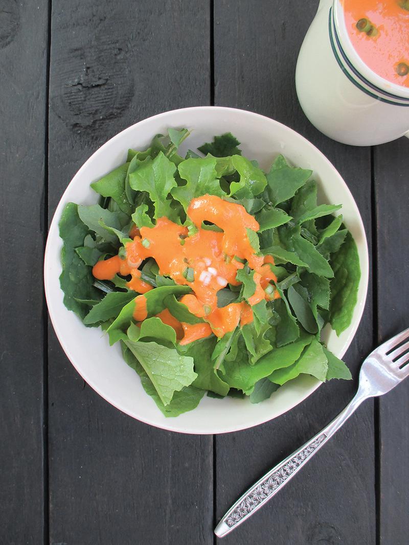 Vegan Gluten free Easy Oil free Capsicum Vege Salad Dressing Recipe 4