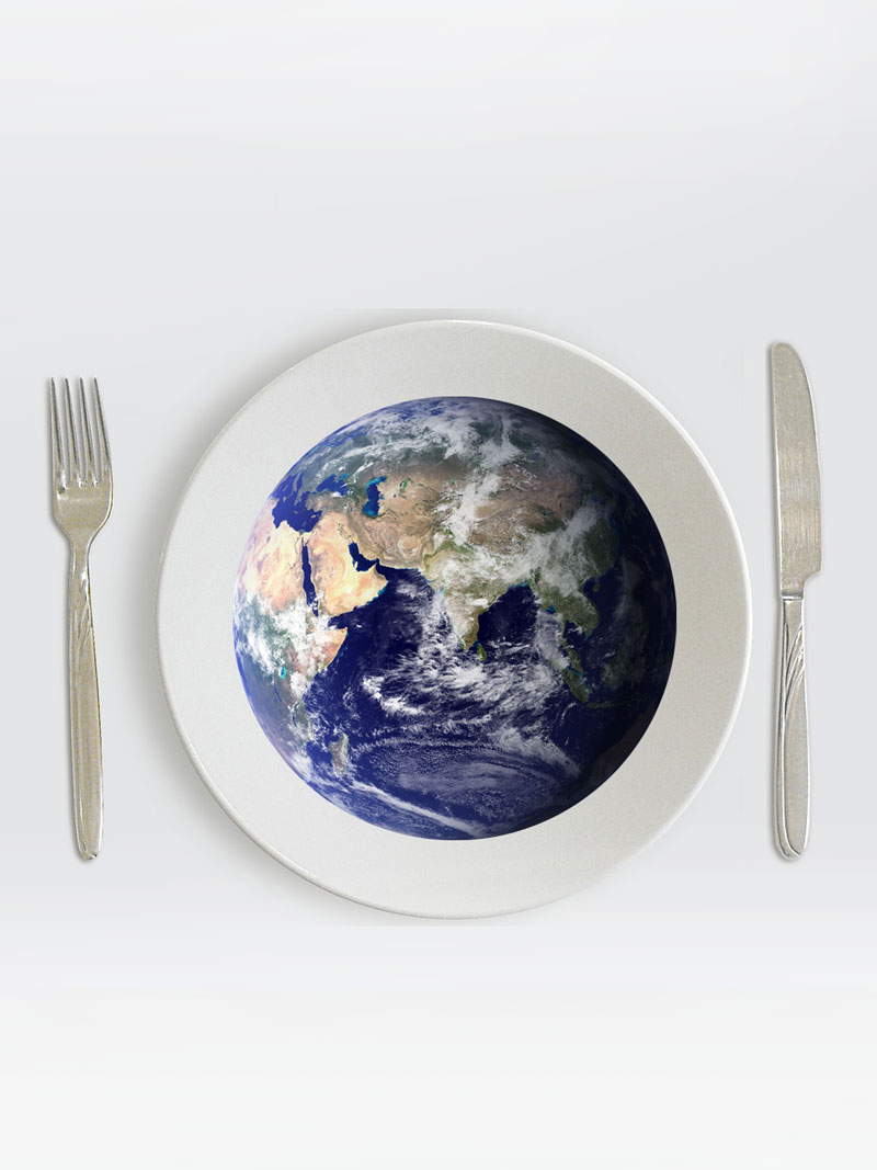 Is Your Diet Killing The Planet? What You Can Do
