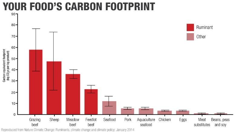 foods carbon footprint
