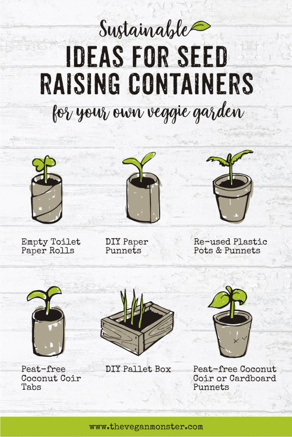 Alternative Sustainable Seed Raising Containers For Your Garden Balcony Or Window Sill