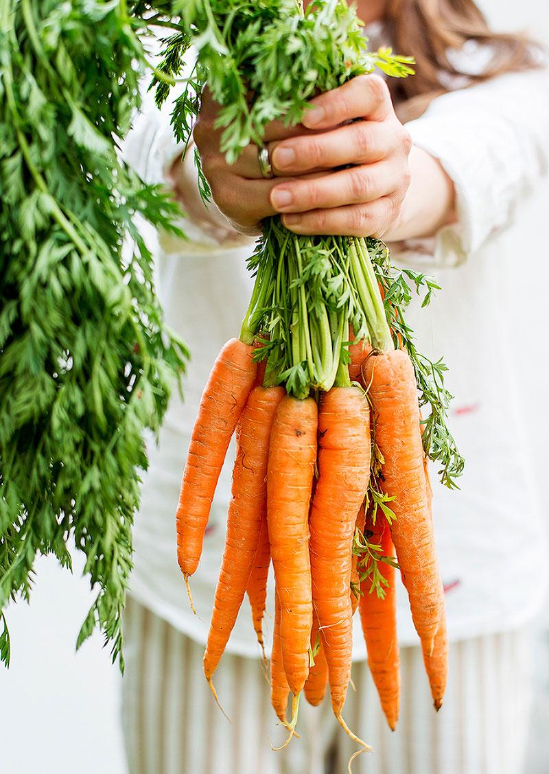 Critical Nutrients Vegan Diet 2